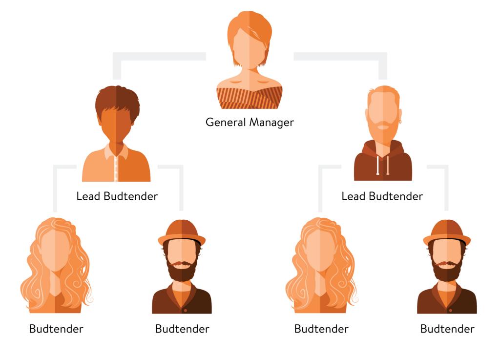 cannabis career position advancement chart