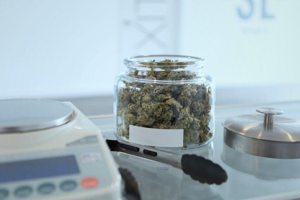 cannabis careers budtending vangst