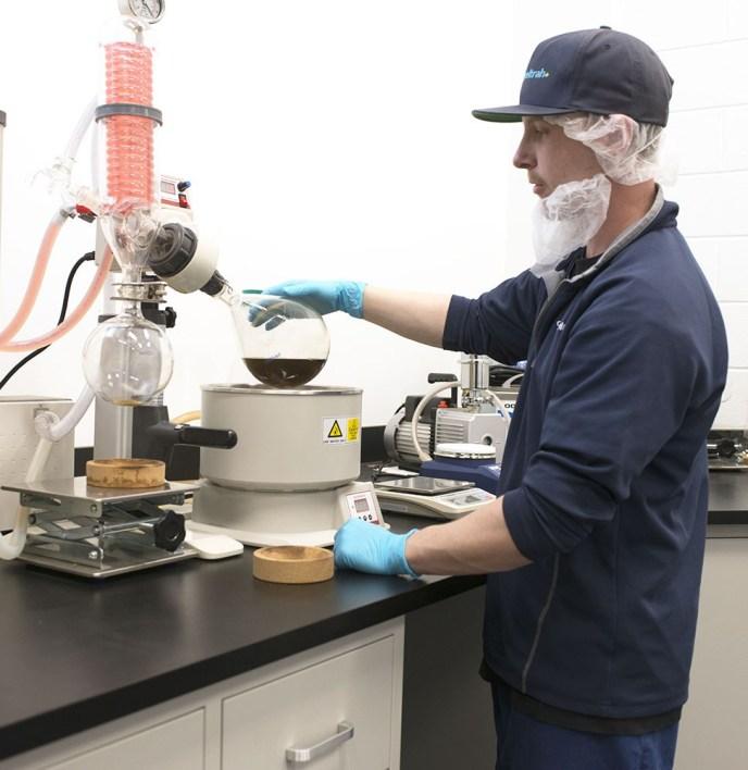 cannabis cresco lab worker