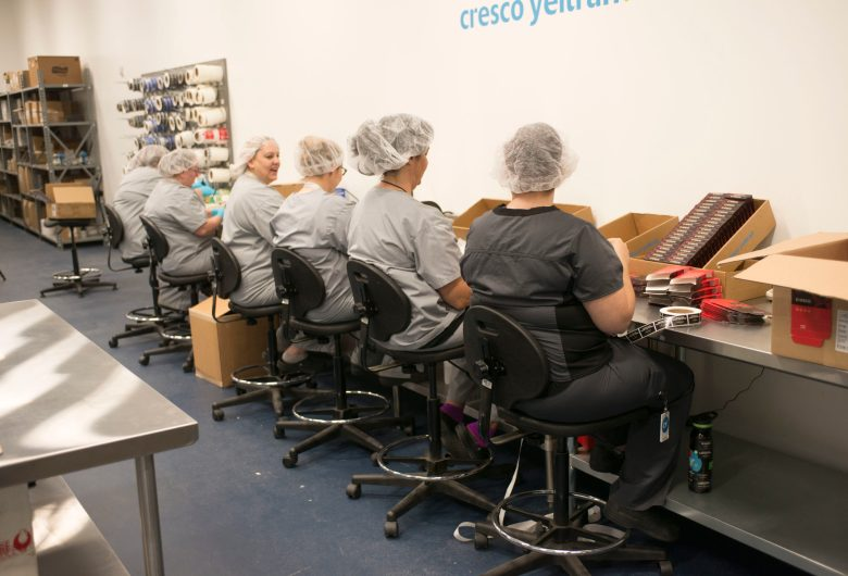 cannabis cresco lab workers