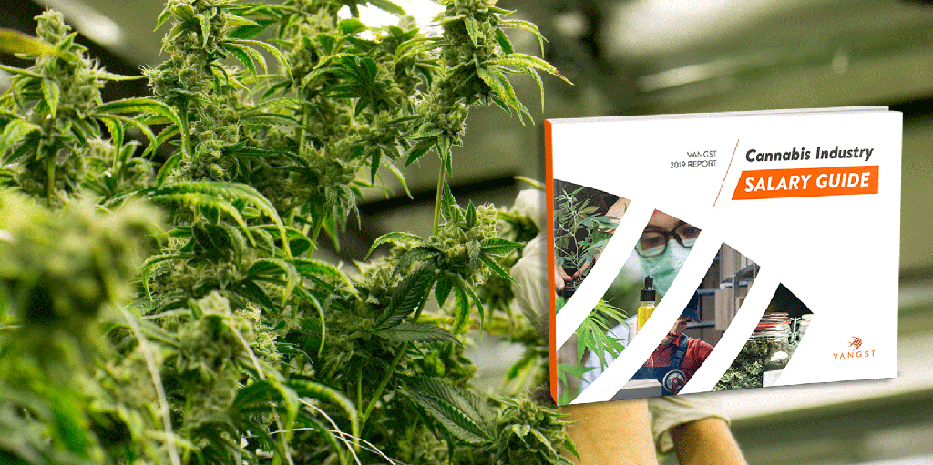 The 2019 Cannabis Industry Salary Guide is Here!