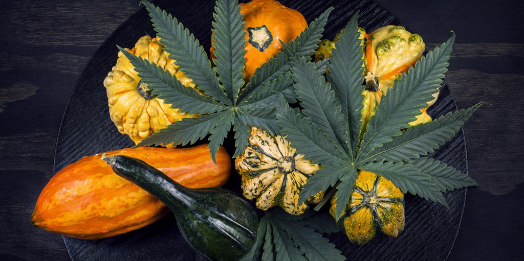 hero-graphic-Green Friday and Weed Wednesday - Why You Can't Miss These Two Holidays