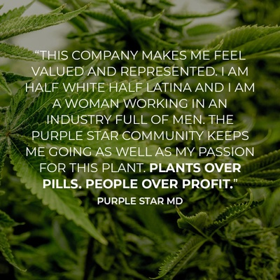 purplestar_quote.jpeg